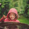 Deszczówka w ogrodzie. Jak wykorzystać ją i jej właściwości?