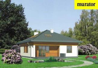 Murator projekt D33 Nieduży - ogród
