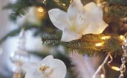 Dekoracje świąteczne w białym kolorze. Białe bombki, kwiaty i świece stworzą wyjątkowy wystrój wnętrza