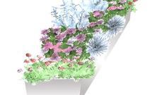 Zieleń na tarasie. Rośliny doniczkowe na słoneczny taras